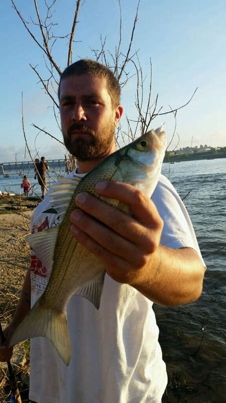 Lake livingston tx fishing reports map hot spots for Lake livingston fishing report