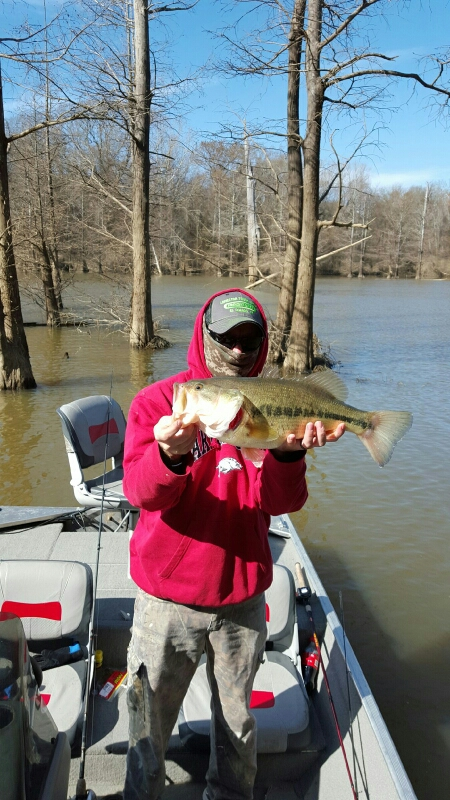 millwood lake ar fishing reports map hot spots