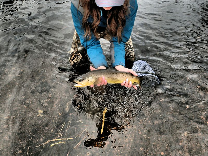 South platte river co fishing reports map hot spots for Best fishing spots in colorado