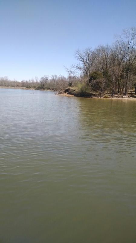 Caesar creek lake oh fishing reports map hot spots for Lay lake fishing report