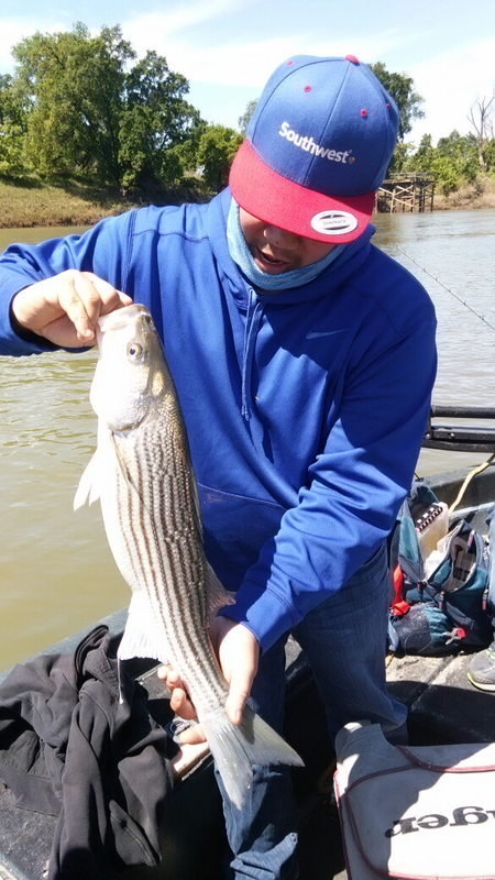 Feather river ca fishing reports map hot spots for Feather river fishing report