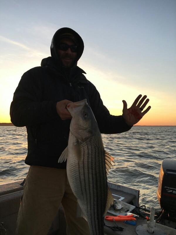 Delaware river de fishing reports map hot spots for Delaware river striper fishing