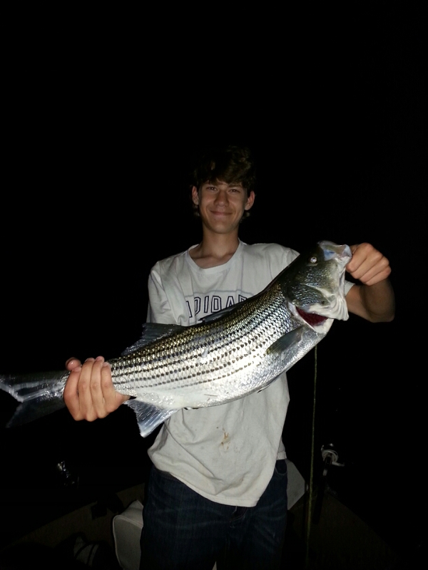 Beltzville lake pa fishing reports map hot spots for Best fishing in pa