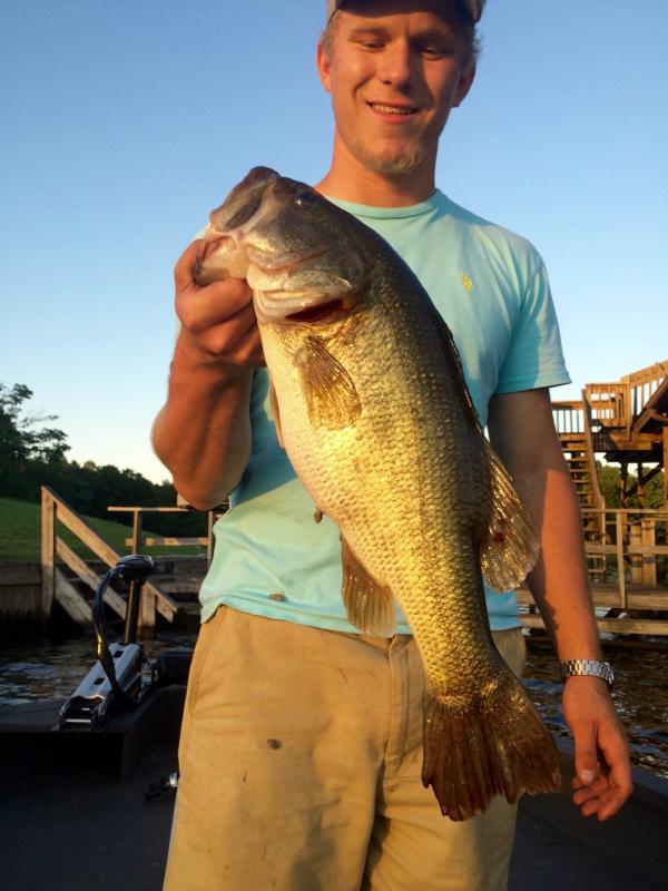 Badin lake nc fishing reports map hot spots for Nc bass fishing reports
