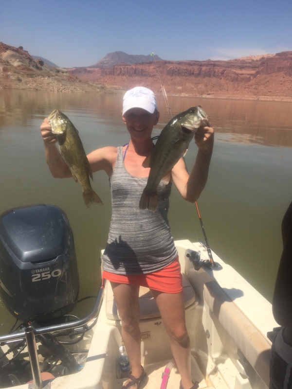 lake powell ut fishing reports map hot spots