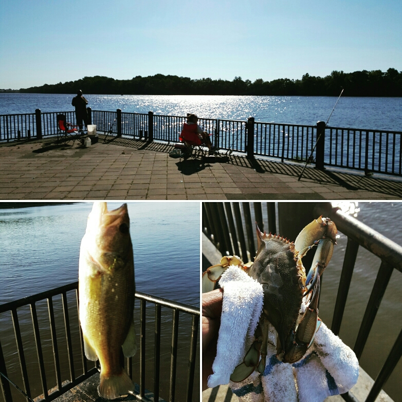 Delaware river pa fishing reports map hot spots for Fishing lakes in pa